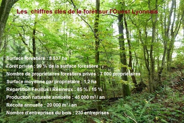Une forêt multifonctionnelle sur l'Ouest Lyonnais