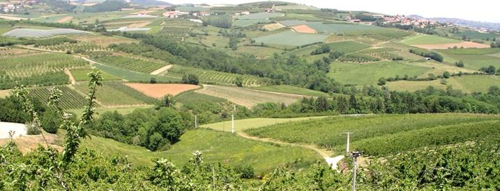 De outils pour préserver le foncier agricole